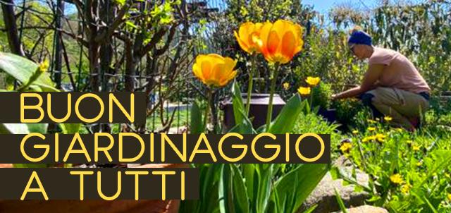 """Orto e benefici - Immagine: """"Buon giardinaggio a tutti"""", Elettra cura il giardino"""